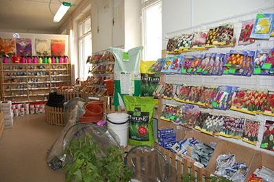 магазин дом семян на комендантском