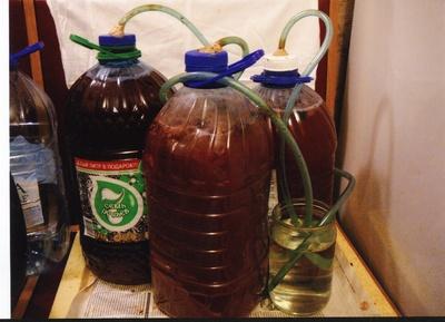 Как приготовить домашнее вино из винограда - АлкоФан
