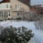 зимовка растений
