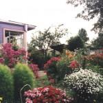 Дом окружен цветами