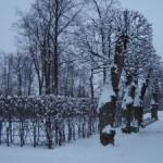 парк в Царском селе