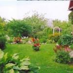 газон с цветниками