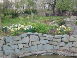 подпорная стенка с растениями