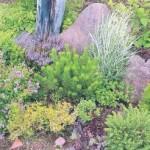 альпийская горка, цветник