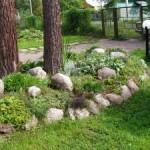 альпийская горка, сад камней