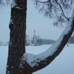 Чесменская колонна в Царском селе