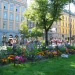 цветники в городском озеленении