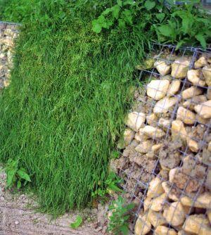 подпорная стенка, использование камней