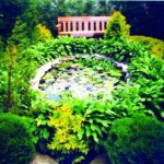 искусственный водоем, оформление растительностью