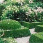 регулярные парки,топиарные формы