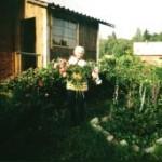 цветочный букет, клумбы