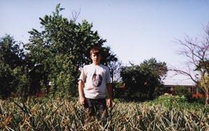 плантация зимнего чеснока