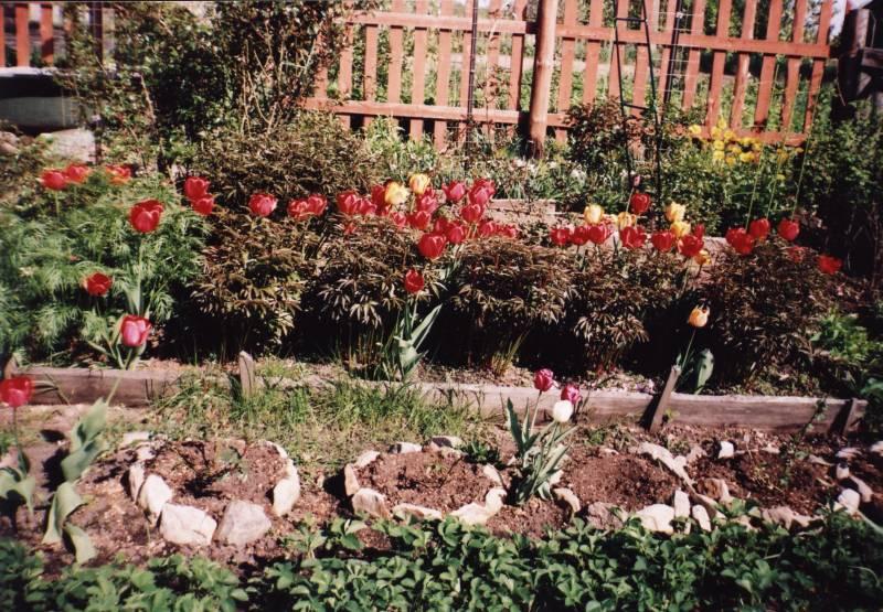 Прекрасный сад где отдыхает душа
