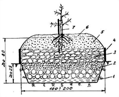 Схема грядки-сопки для плодово-ягодных культур
