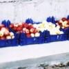 """""""Урожай белых и красных яблок с одной яблони"""" Л. Рыбкина"""