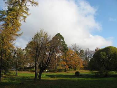 парк Монрепо
