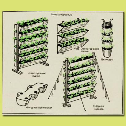 Вертикальная кассета для выращивания земляники