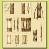 способы лечения поврежденных деревьев