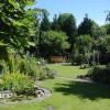 газон и водоем в саду