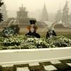 Композиция Настольный сад