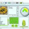 Рис. 9. Страница энциклопедии, встроенной в программу TurboFLOORPLAN Landscape and Deck