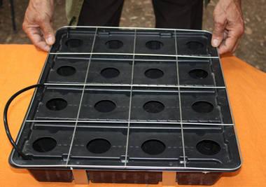 Контейнер для выращивания земляники