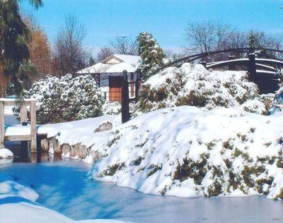 Сад зимний