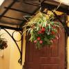 Подвесные кашпо с цветами могут украсить вход в дом