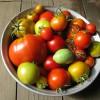 Подготовка урожая к хранению