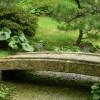 Японский  сад с европейскими растениями