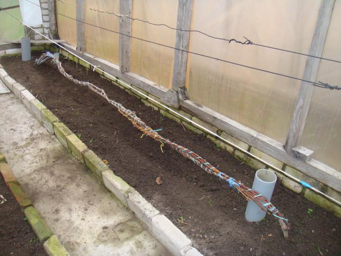 Подготовка лоз винограда к надежной зимовке - FloraPrice.Ru