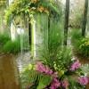 Царство цветов и воды