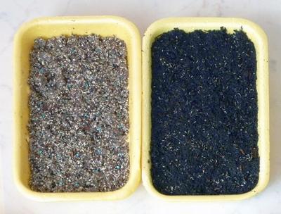 Семена высеваются непосредственно на гелевый субстрат либо слой прикрывающей его почвы