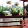 Цветы цветут на террасе