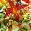 Лилейник в салате