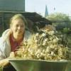 Урожай ярового чеснока