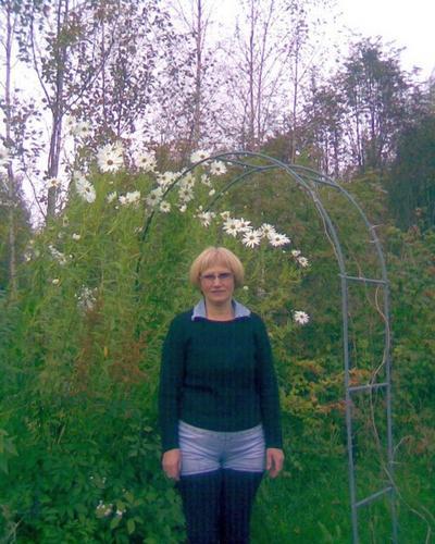 «Ромашки» в октябре – это модно и стильно (Королькова С. М. в своем саду)