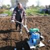Посадка картофеля картофель овощи огород